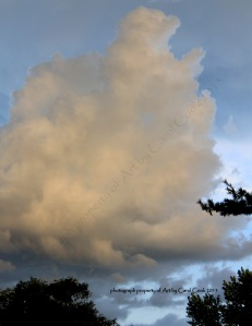 clouds relflecting the sunset...